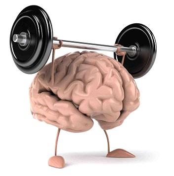 Şekil 1. Basınç altındaki beyin