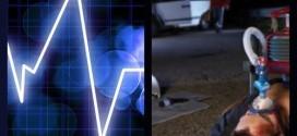animax görsel