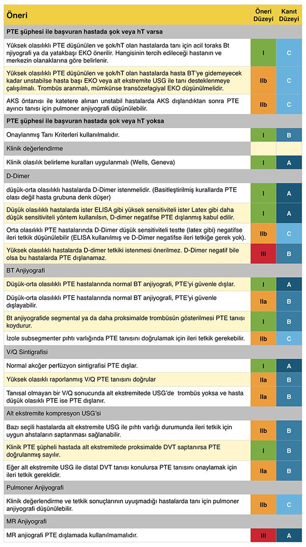 PTE'de tanıya yönelik öneri ve kanıt düzeyleri