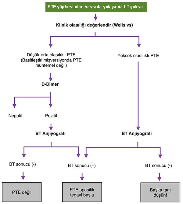 Şok ya da hT olmayan hastada PTE tanı algoritması