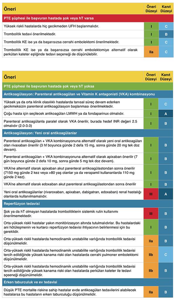 PTE tedavi öneri ve kanıt düzeyleri