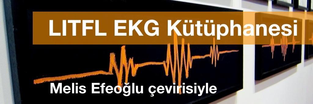 LITFL EKG Kütüphanesi