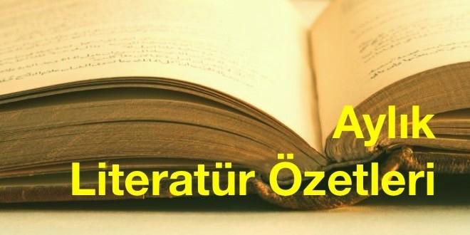literatür özetleri