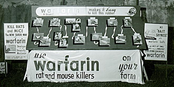 Photo of Varfarin ile ilişkili İntrakraniyal Kanama korkusu gerçek mi?