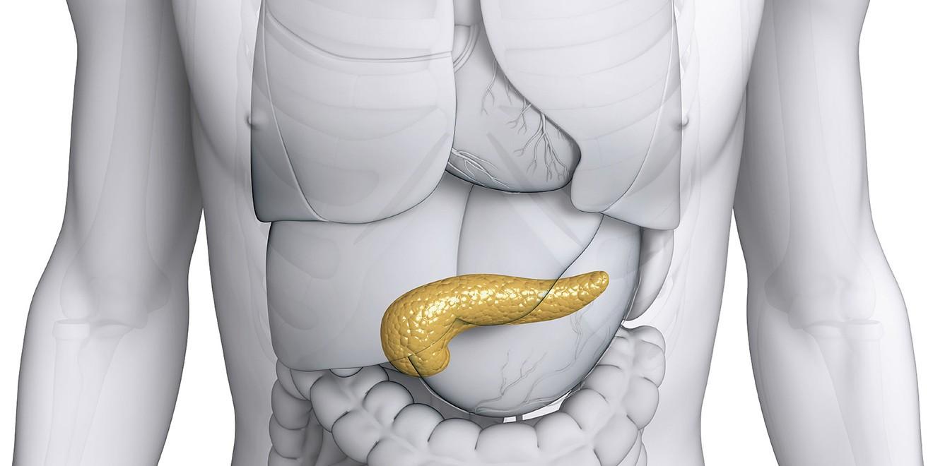 Pankreas. Pankreatit için beslenme