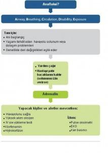 anaflaksi