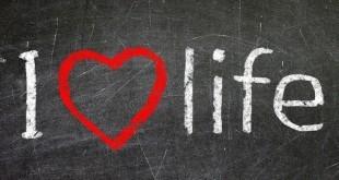 i-love-life