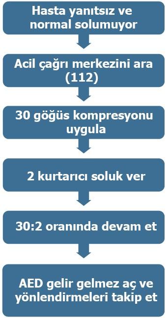Şekil 3. TYD algoritma basamakları