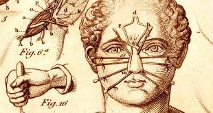 ancientmedicine