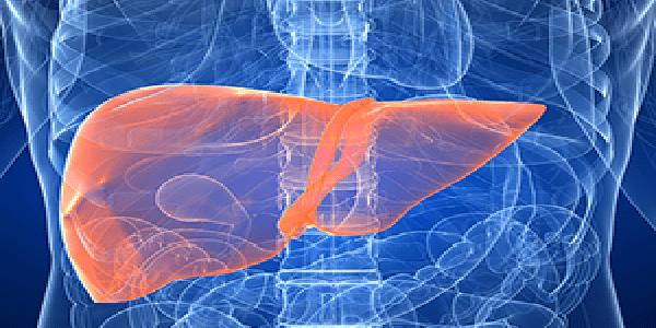 Photo of Acil serviste abdominal tomografi yorumlama kılavuzu: bölüm 2 – karaciğer
