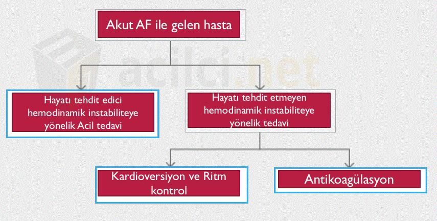 AF Yönetimi