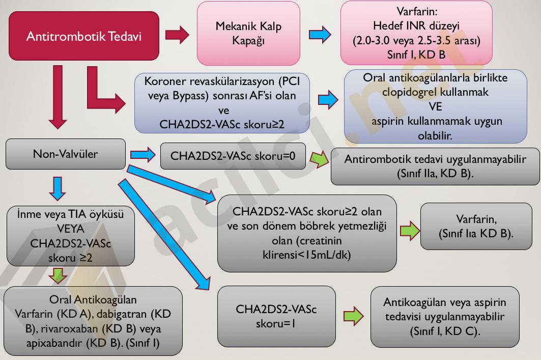Antikoagülan karar yönetimi (AHA)