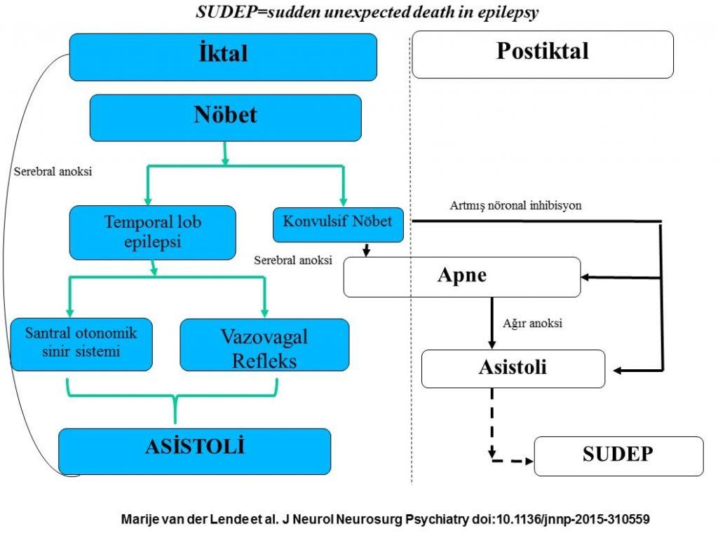 J Neurol Neurosurg Psychiatry jnnp-2015-310559, Figure%A01-min