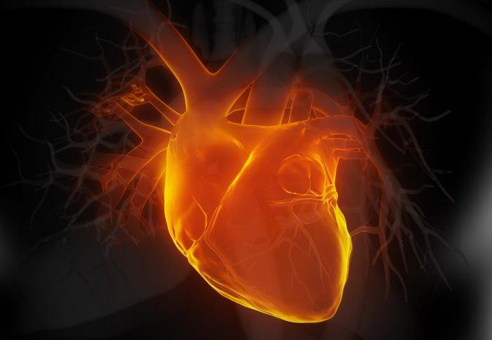 Photo of Ultrafiltrasyon mu? Loop diüretikler mi? Akut Kalp Yetmezliği Tedavisindeki Yerleri