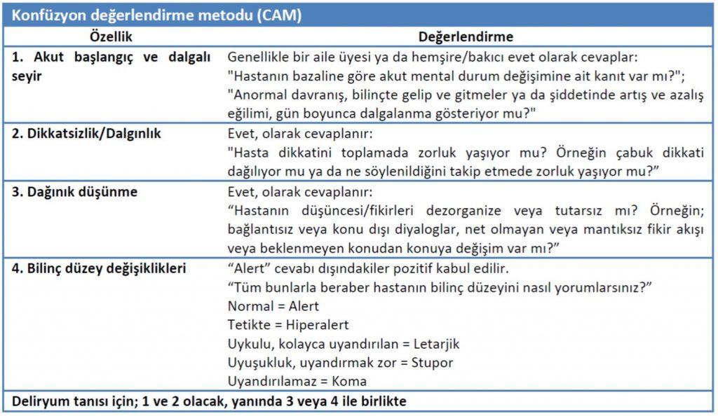 Konfüzyon değerlendirme metodu (CAM)