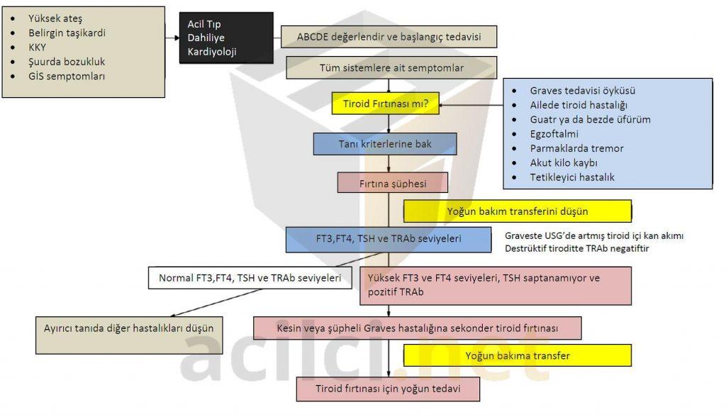 Tiroid fırtınası tanı algoritması