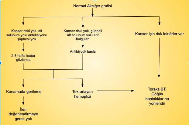 Masif olmayan hemoptizi ve normal akciğer görüntülemesi için algoritma