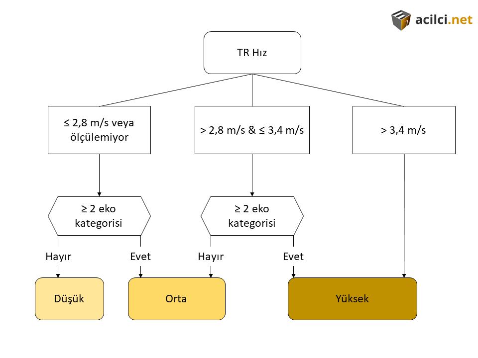 Triküspit kaçak hızının belirlenmesiyle PHT olasılık değerlendirmesi. (PMID: 26320113)
